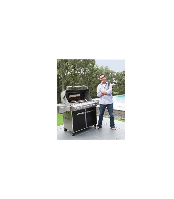 barbecue a gas weber summit e 670 gbs black mancini. Black Bedroom Furniture Sets. Home Design Ideas