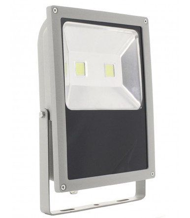 LED Floodlight IP65 - 100W 4200K