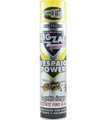 spray insecticide highly effective zigzag specialist wasps nest