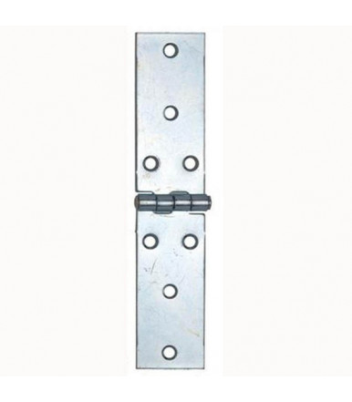 Aldeghi long hinges galvanized steel