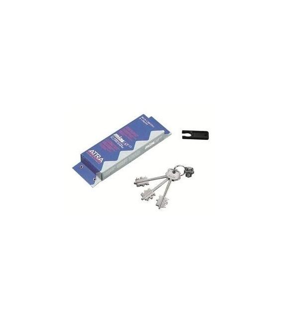 Burg cylinder lockblocking key