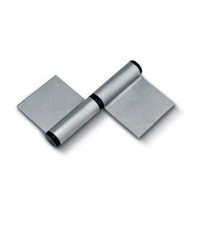 Rolling Center iron hinge