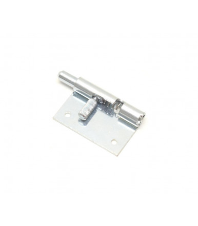 Southco retractable door removal hinges F6-20-N1A50WL