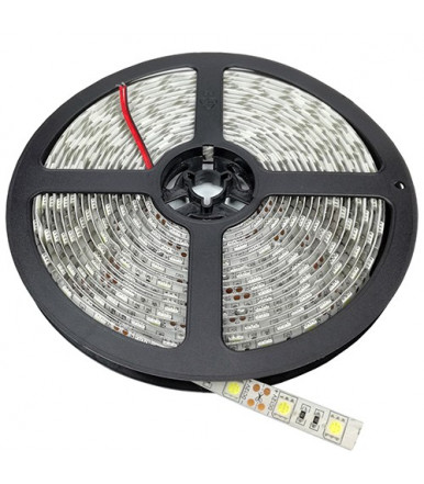 Strip LED 5050 60 SMD/m non impermeabile Luce Bianco-freddo